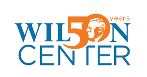 Contribution to Wilson Center Africa Program Year in Review